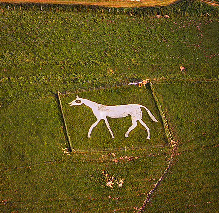Pewsey White Horse Hill Figure.  Photo by Dae Sasitorn and Adrian Warren.